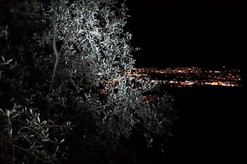 francigena-di-notte