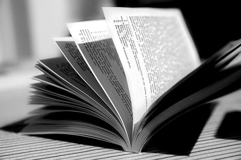 premio-letterario-camaiore